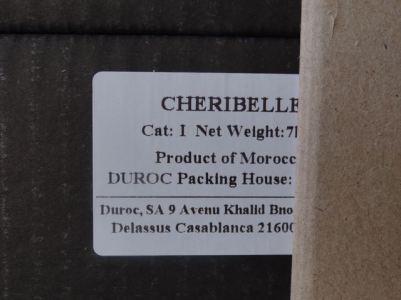 DSC05166